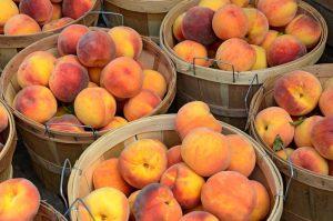 Atlanta Known For Peaches