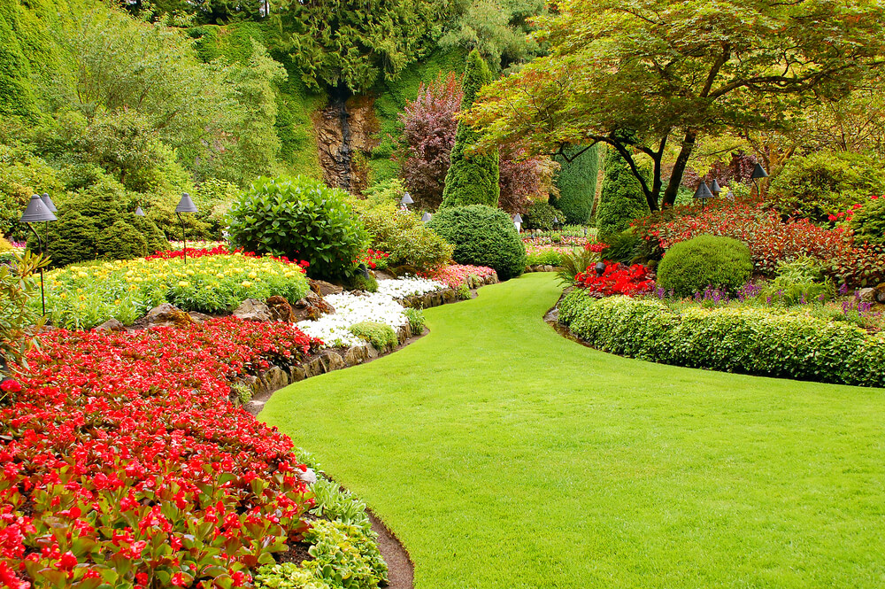 How to Make Your Front Yard Look Nice (Answered by a Local ...