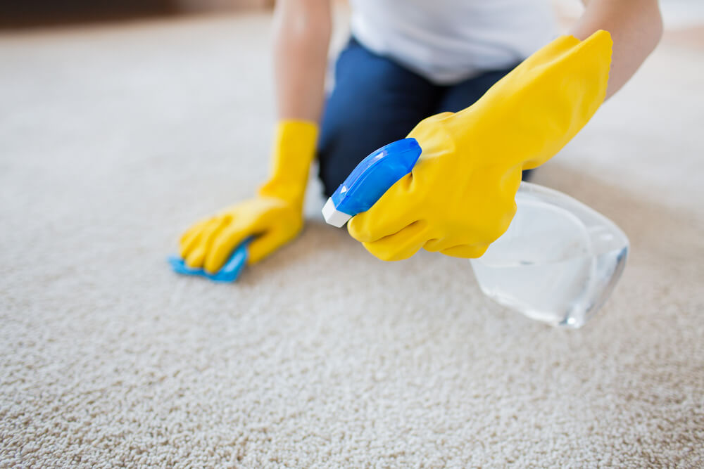 How to Remove Slime from Your Carpet