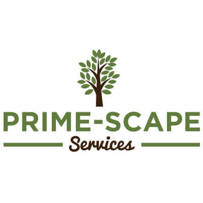 Prime-Scape Services - tree service clearwater