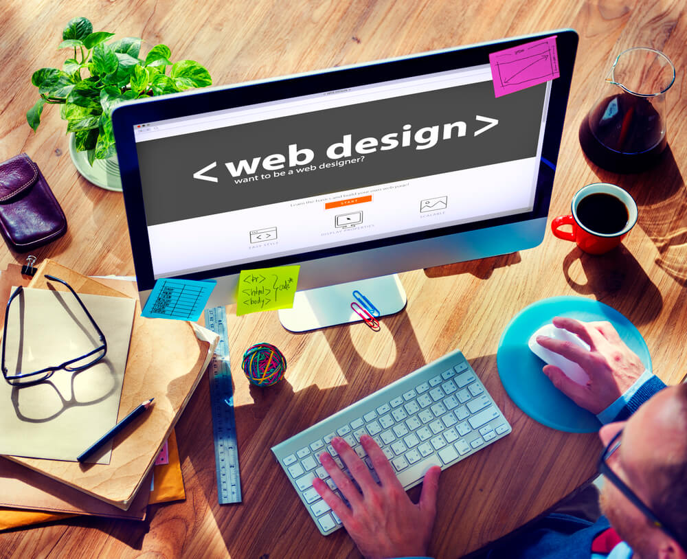 Web Designer and Web Developer What Is the Difference