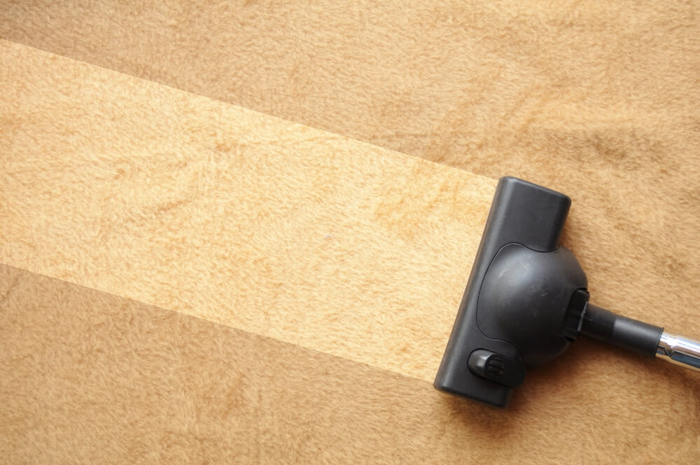 What Do Professionals Use to Clean Carpets?