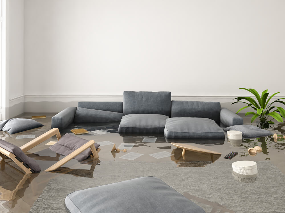 What Is Water Damage Restoration and How Much Does It Cost
