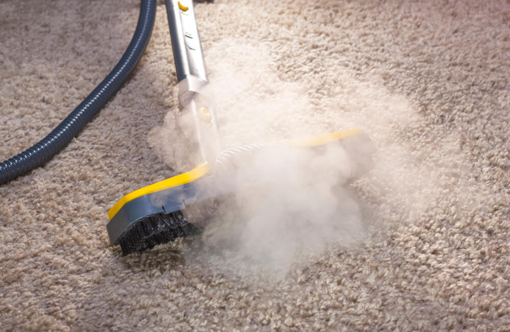 What is Steam Cleaning Carpet