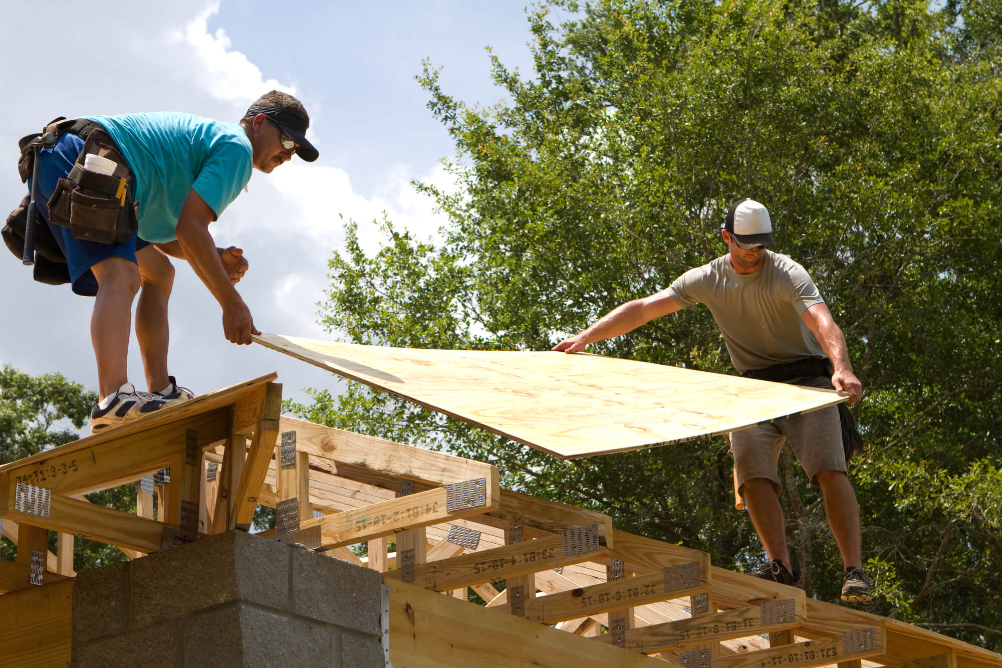 When to Replace Roof Sheathing